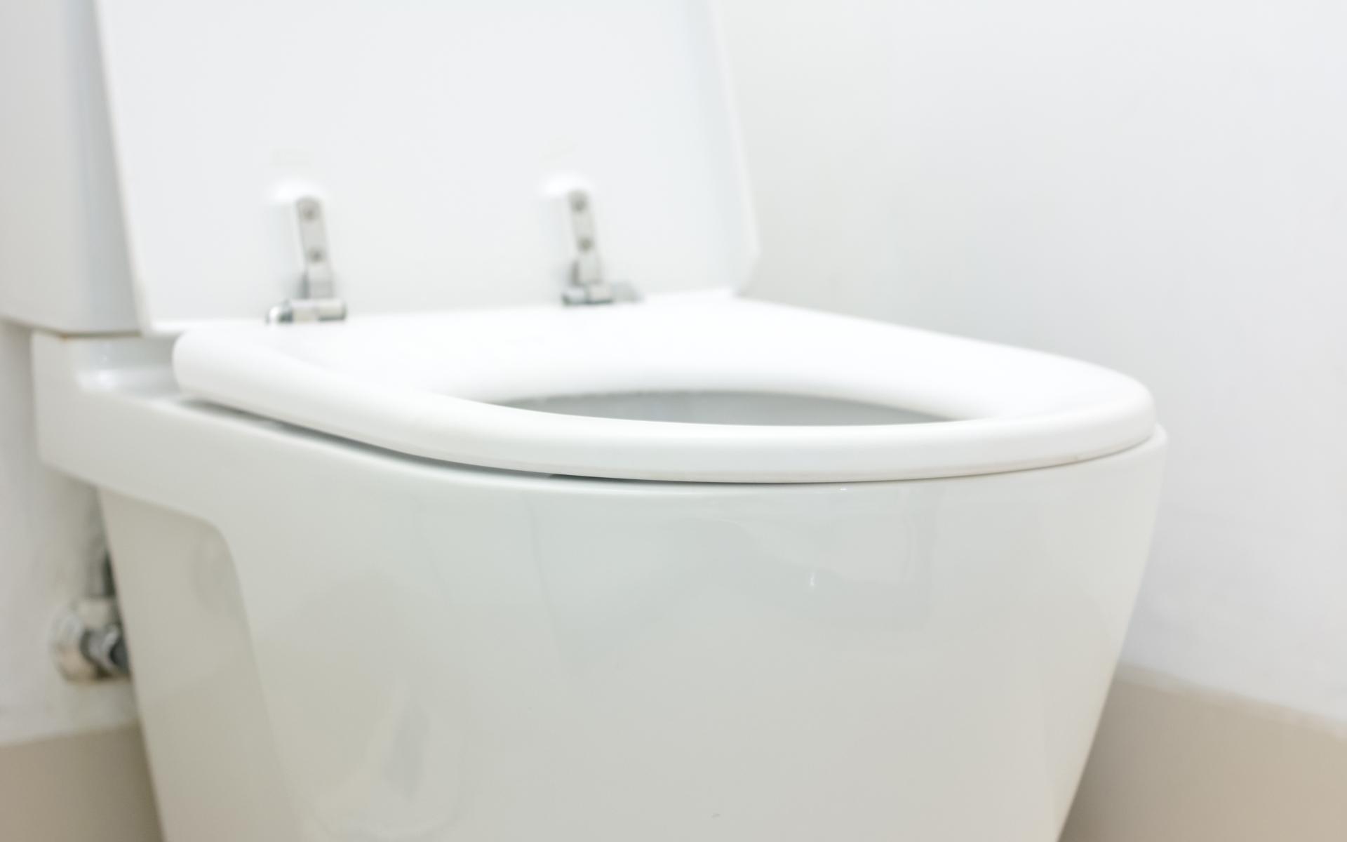 Havertown Toilet Repair
